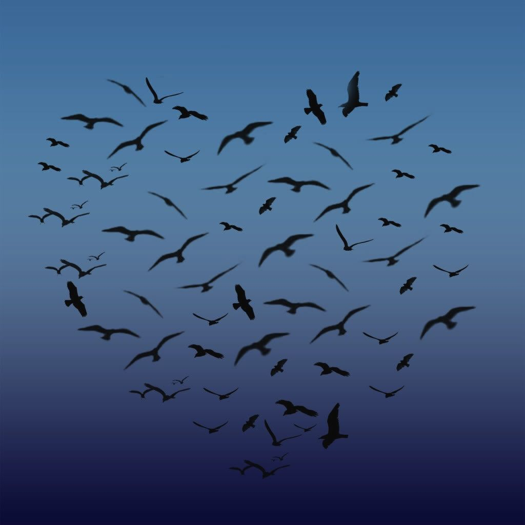 Be Iformed_Story Stick Tutorial_photo of a flock of birds in the shape of a heart in the sky at dusk